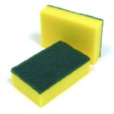 Scourers and Sponges